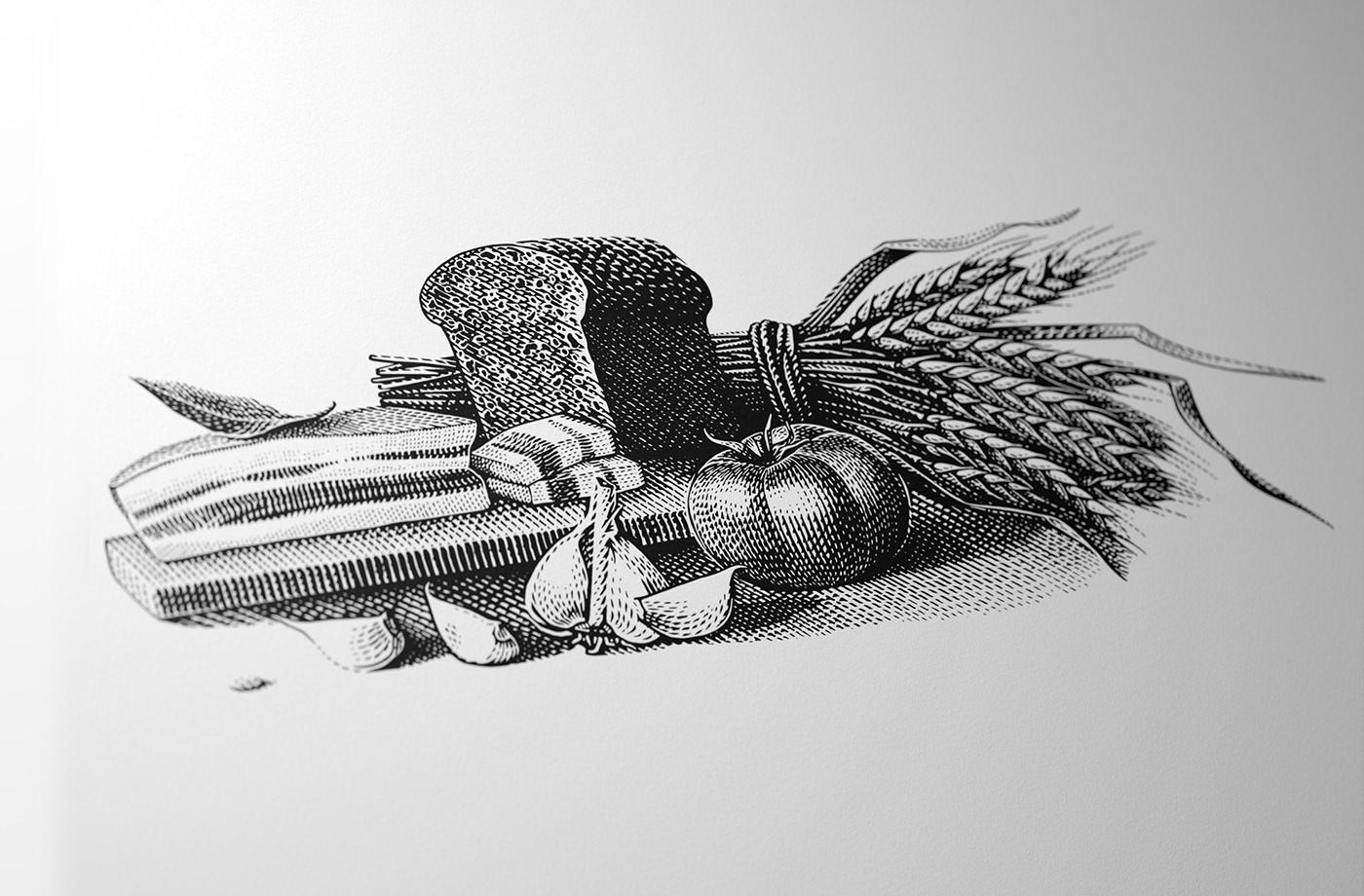 engraving etching ILLUSTRATION  vareika vareyko vintage