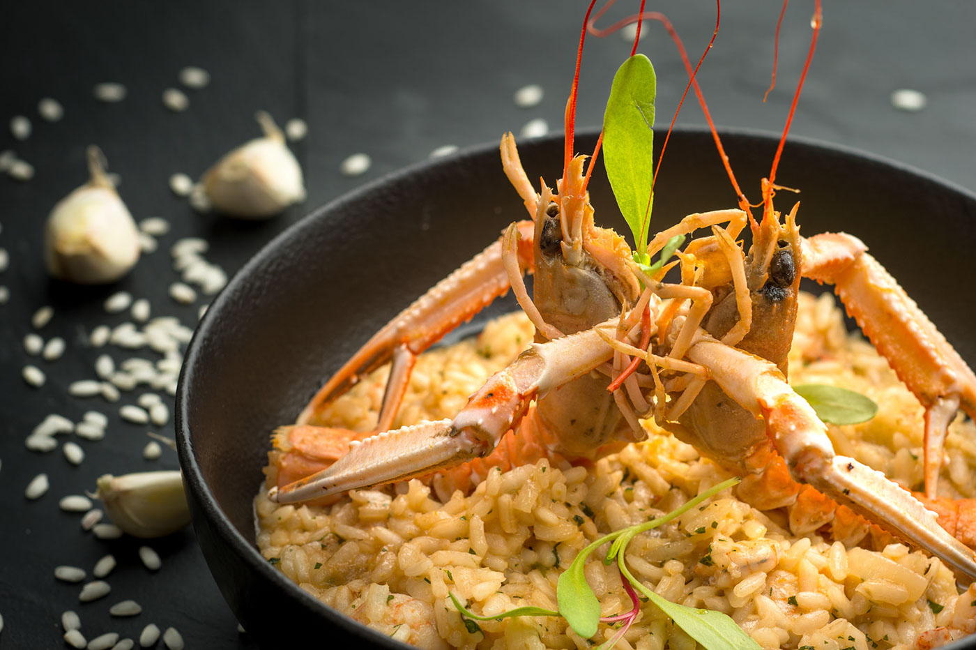Food  Photography  beverage culinaire Culinary art cooking photo Nikon profoto