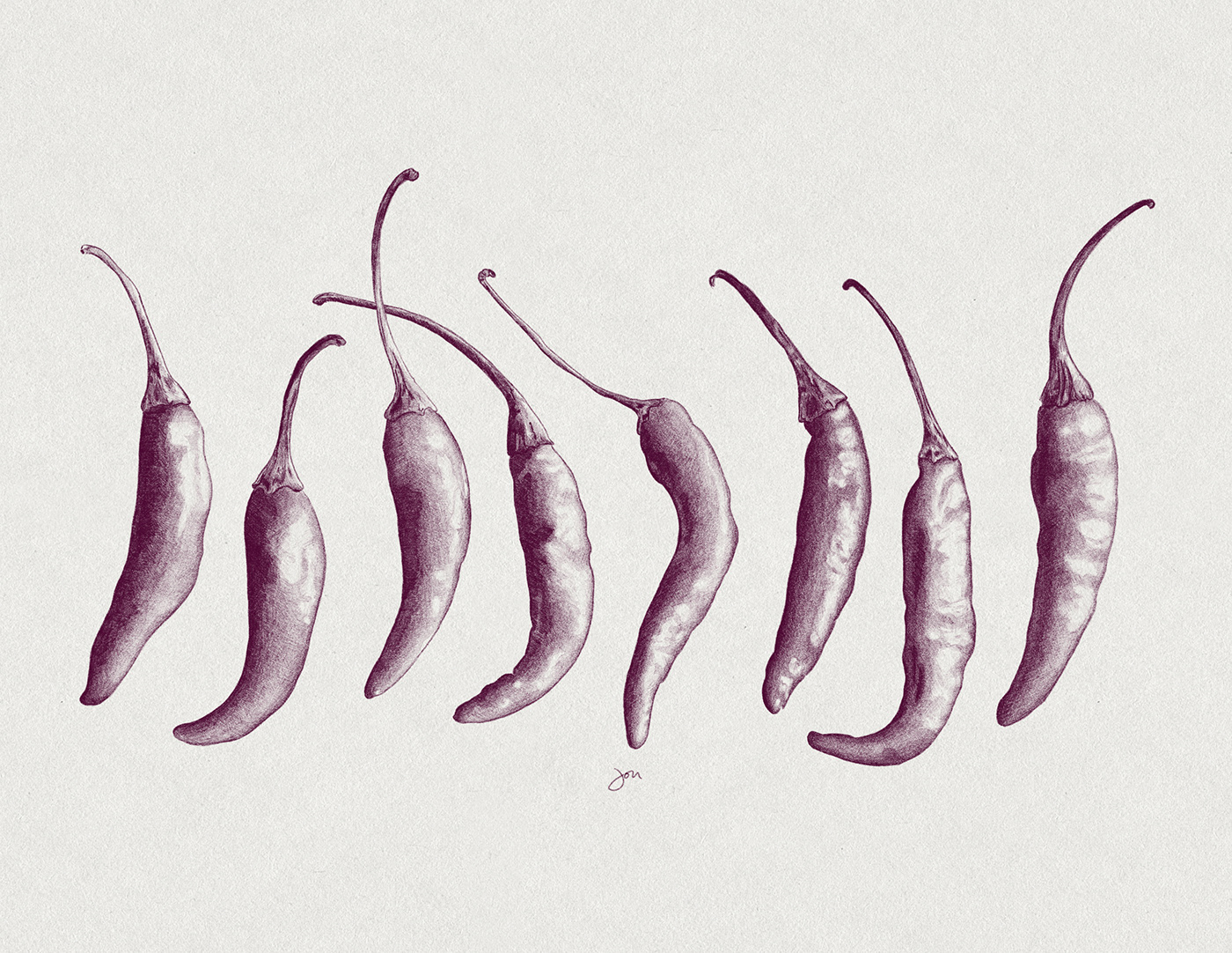 adobe fresco Chili Peppers Digital Art  Drawing  ipad pro sketch