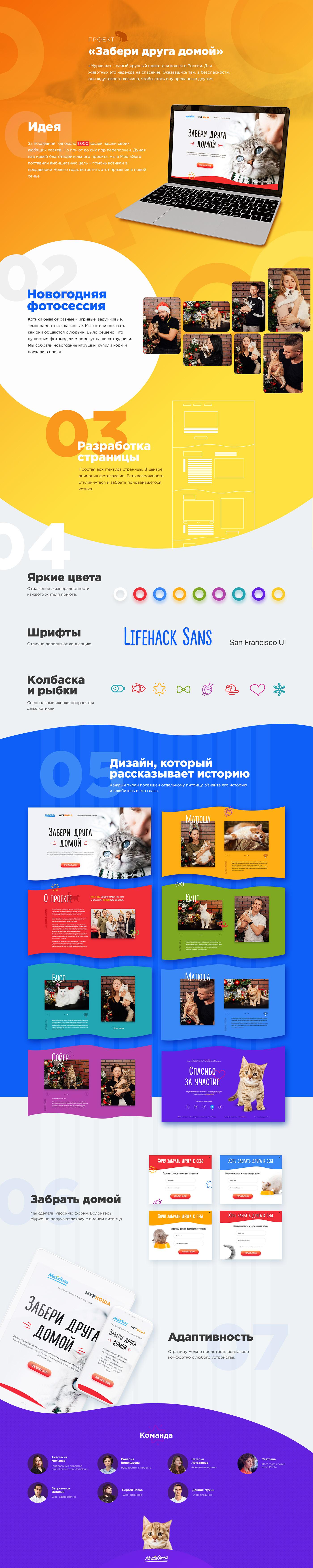 Благотворительность ,муркоша,животные,Социальный проект,котики,mediaguru,приют,москва