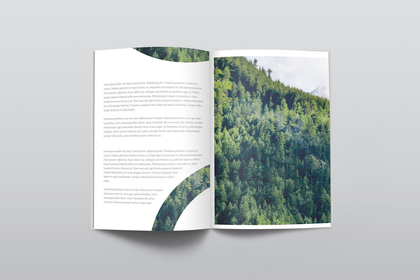 free psd Mockup freebie magazine a4 us letter photoshop free mockup  mock up mock-up flyer paper book