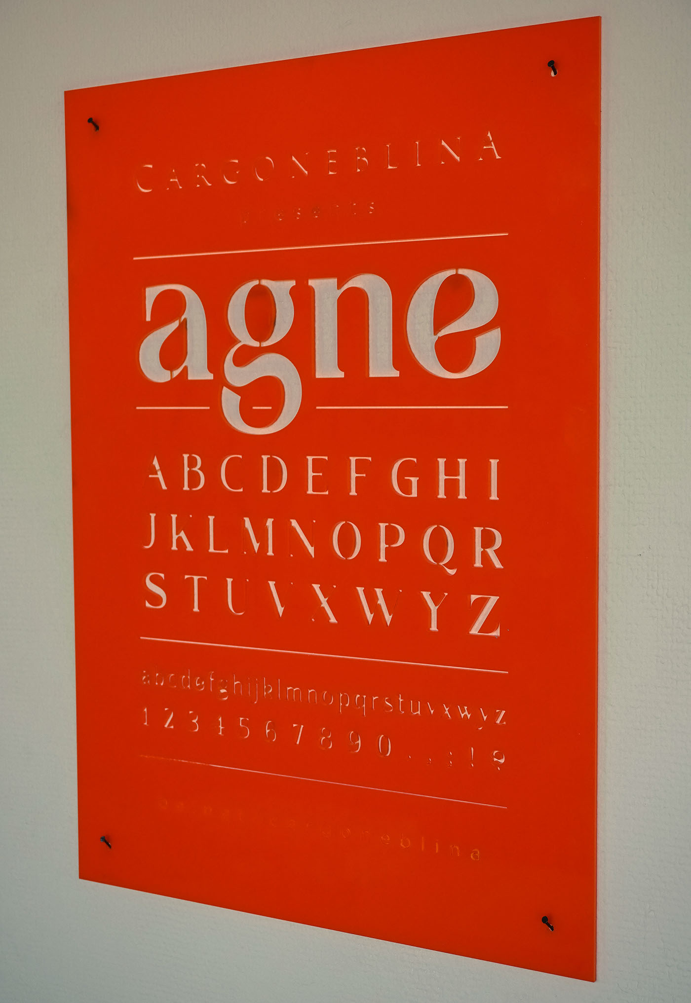 Agne,font,download,Typeface,typedesign,free
