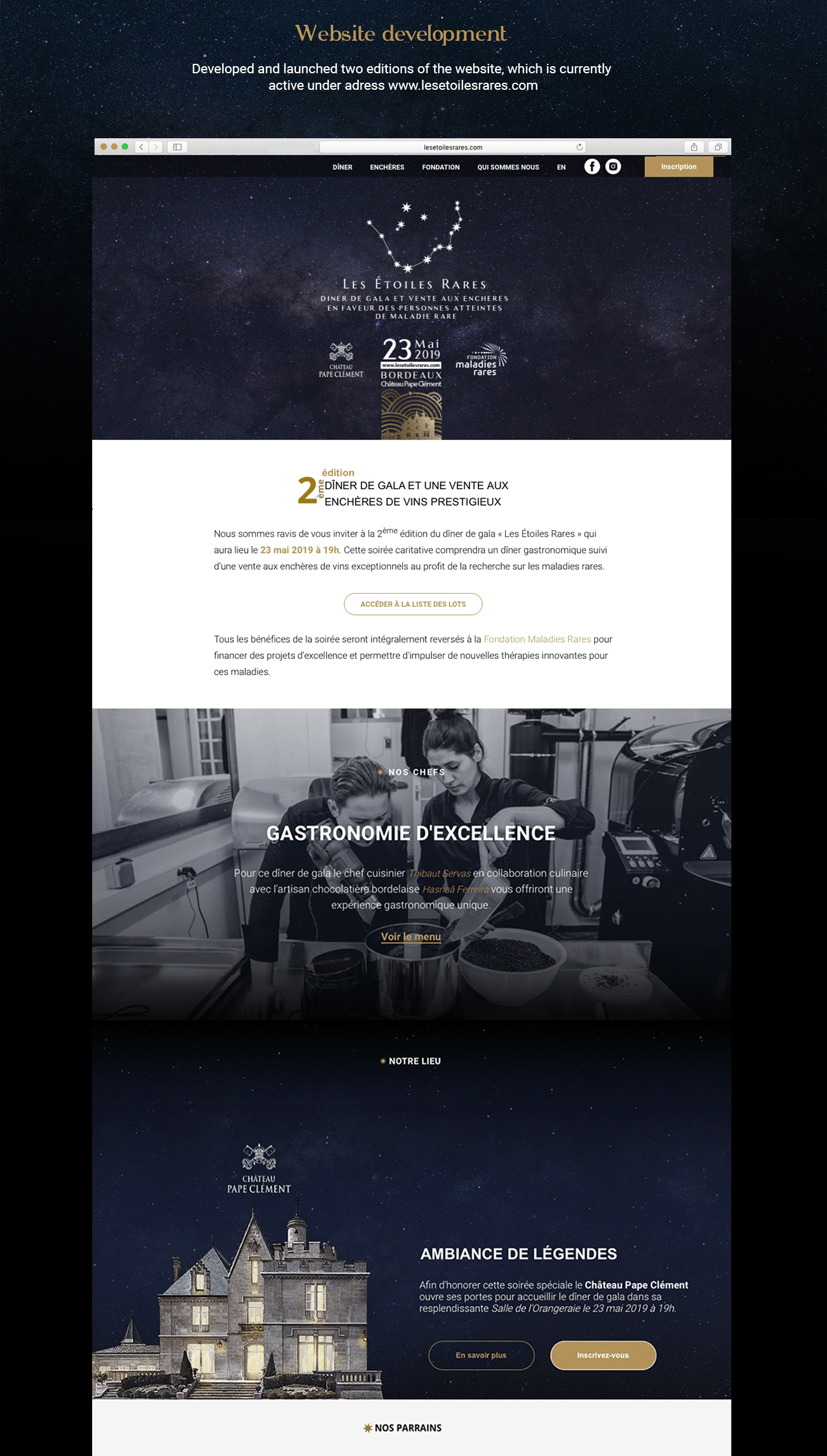 auction charity corporate style logo Web Design