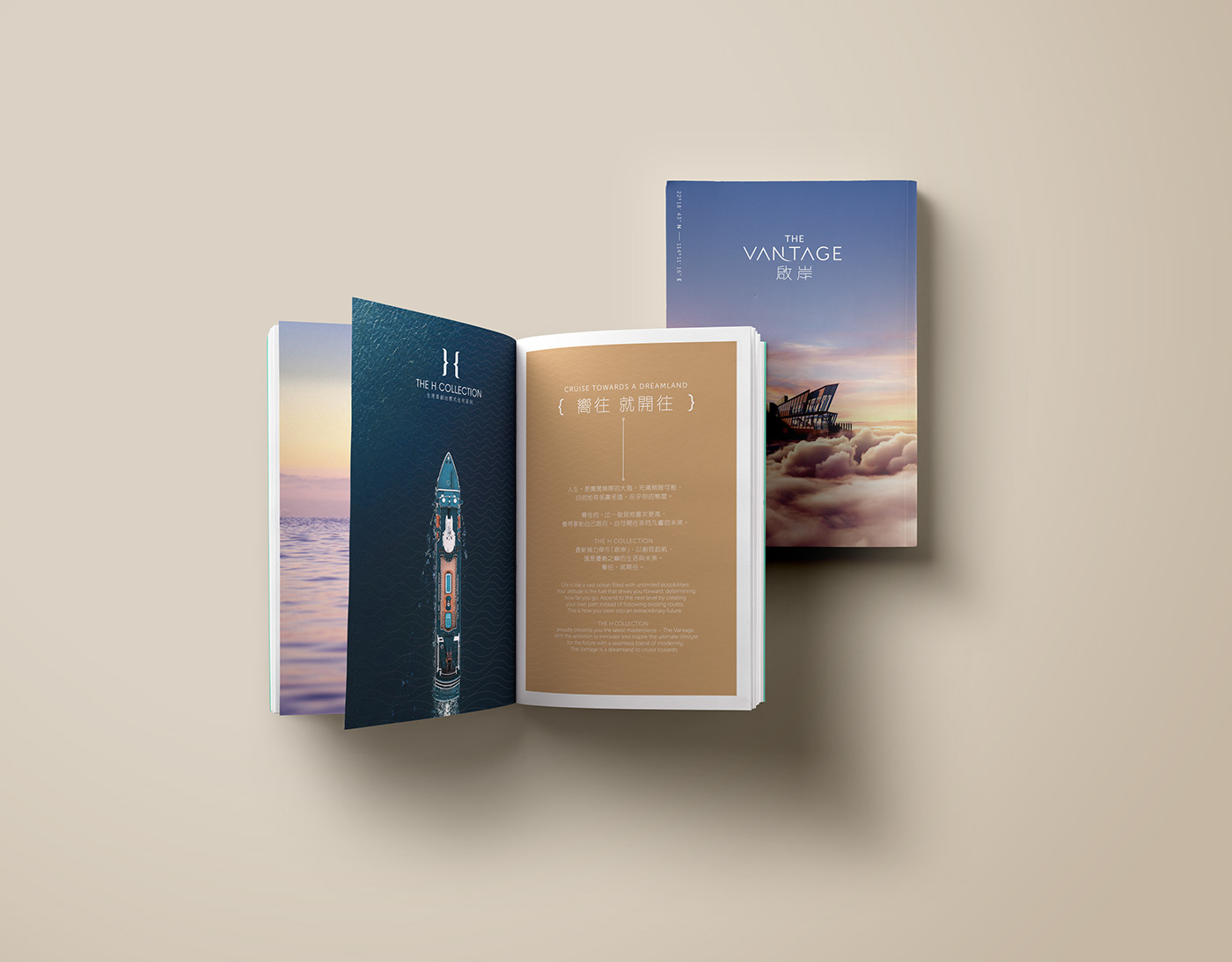 Image may contain: book, wall and print