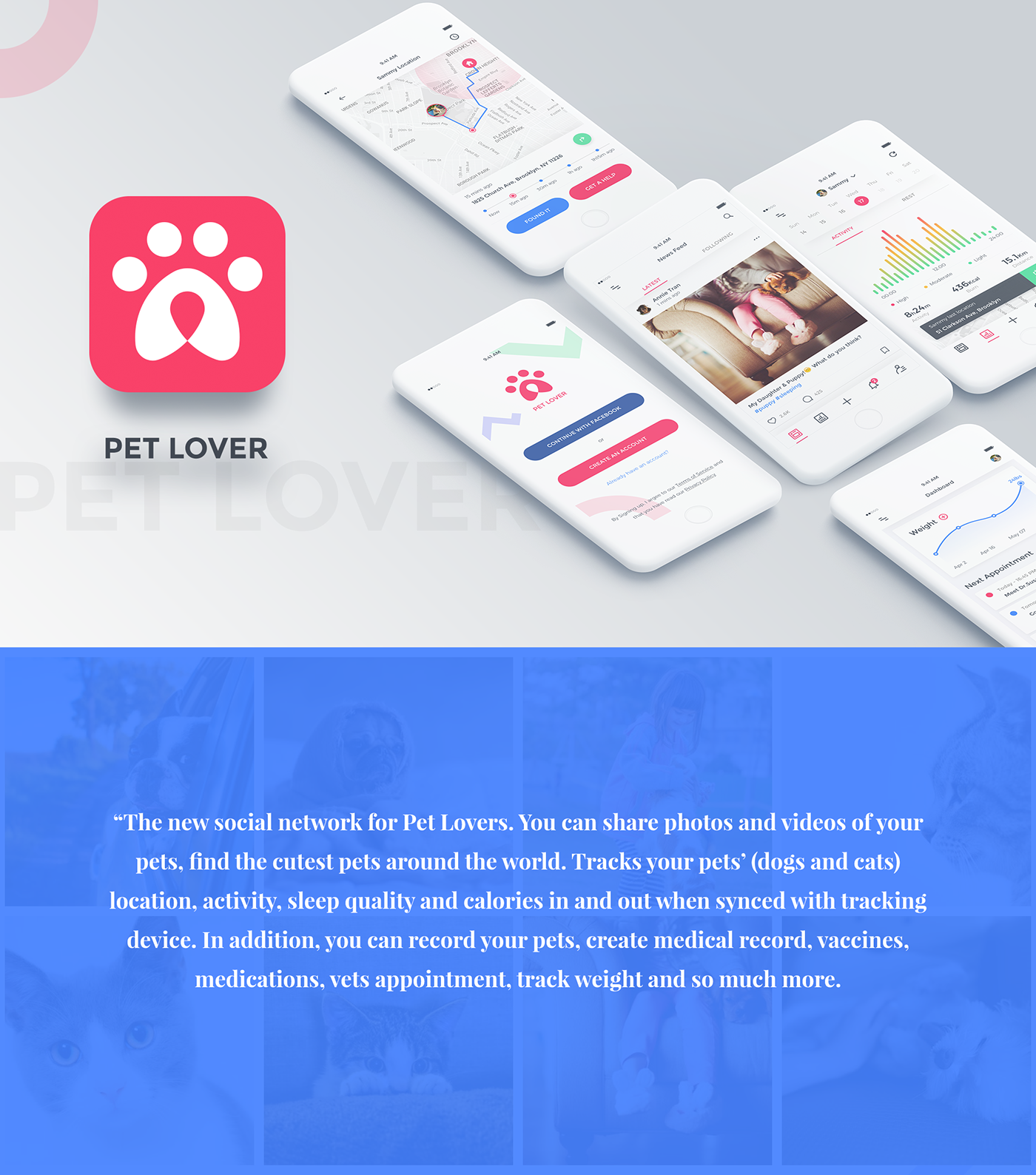 pet lover pet social network health tracking ui kit on behance