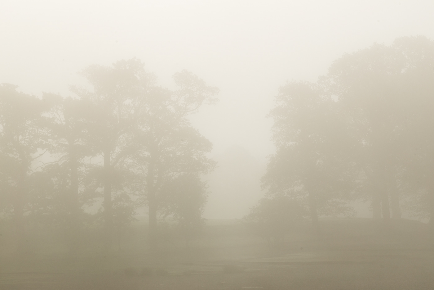Landscape england lakedistrict Photography  countryside lake mountains mist fog Canon