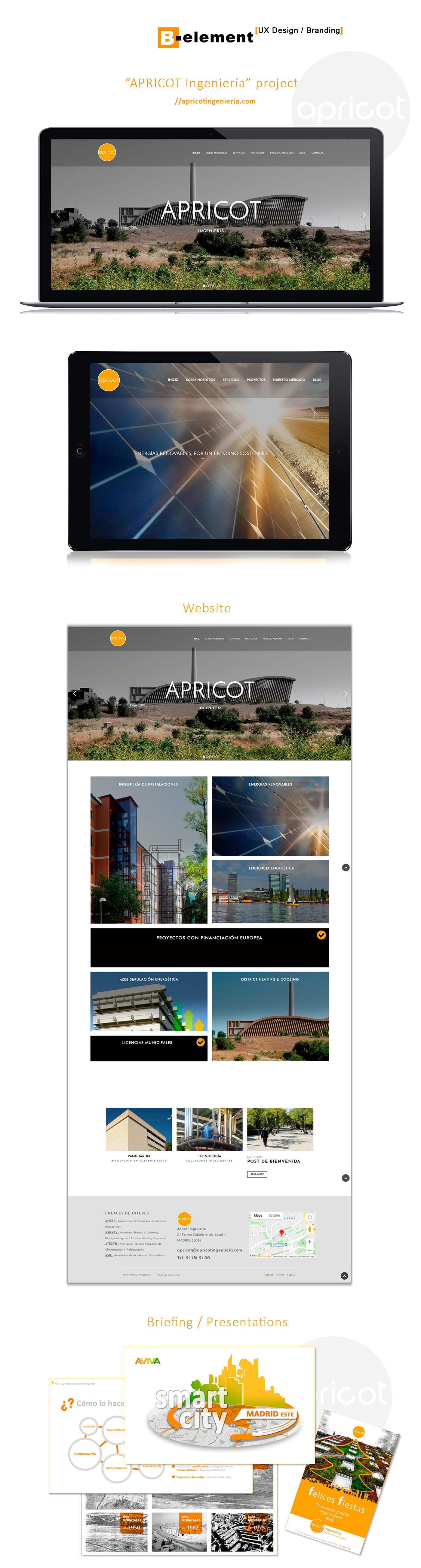 Web Design  graphic design  branding  Identidad Corporativa Diseño web diseño gráfico