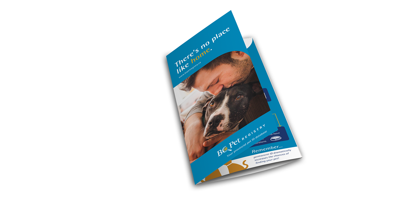 poster brochure tri-fold Photography  stock photography pets cats dogs microchip Packaging