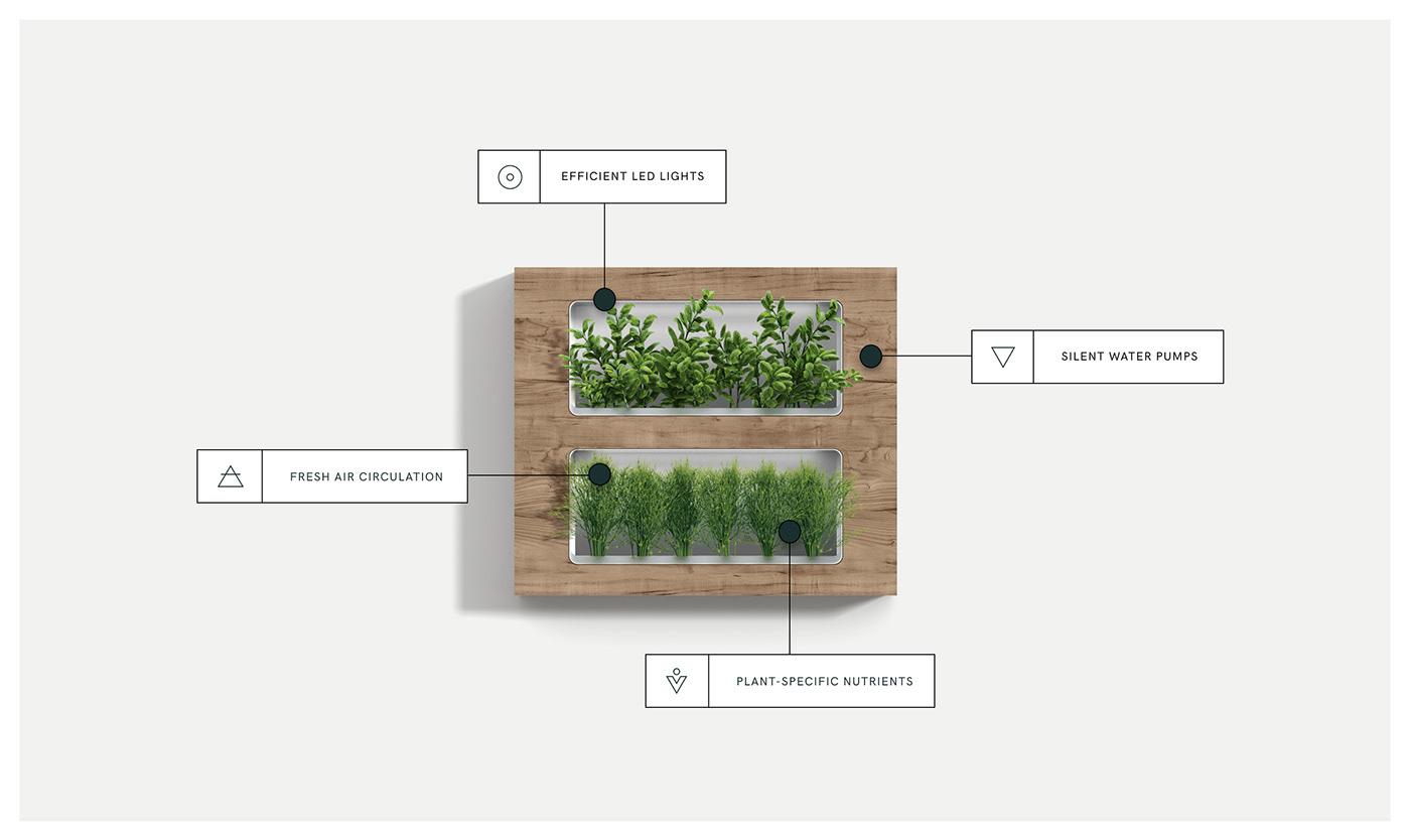 Image may contain: screenshot, plant and abstract