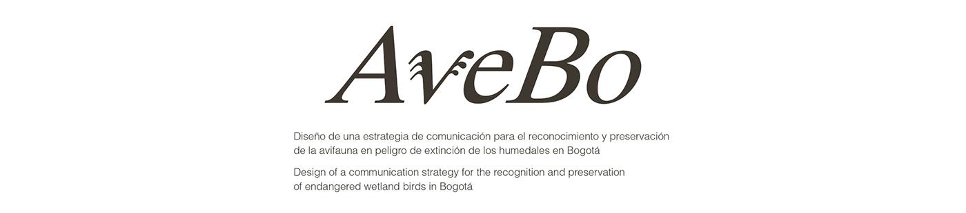 aves Avifauna bird book en peligro de extinción Humedal illustracion ILLUSTRATION  preservacion editorial