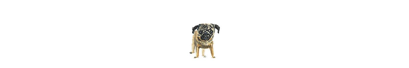 dogs graphic design  ILLUSTRATION  ink packaging design painting   pattern design  Sustainable Design typography   typography design