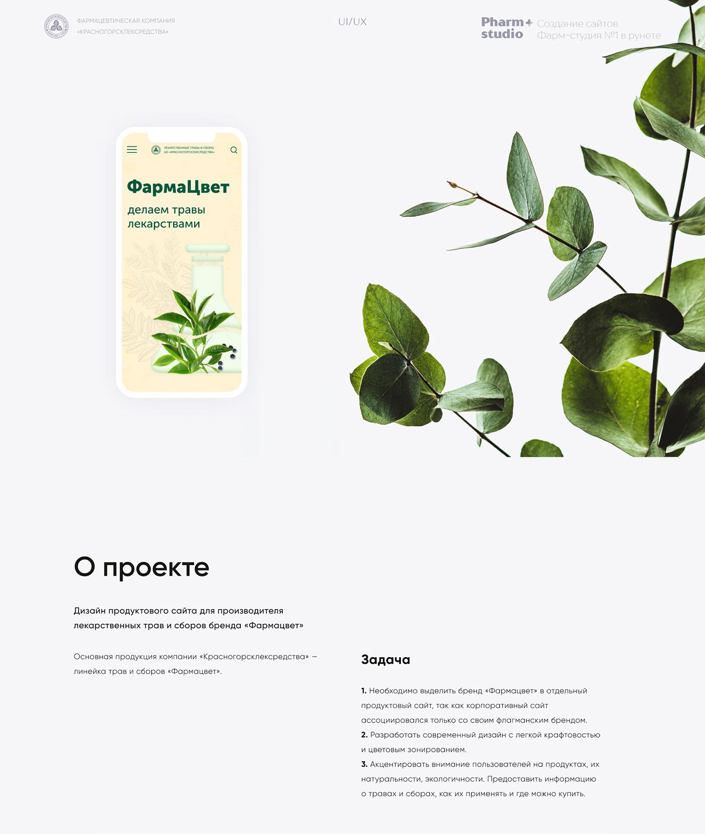 brand Drugs Health pharmacy promo tea UI ux Web Webdesign