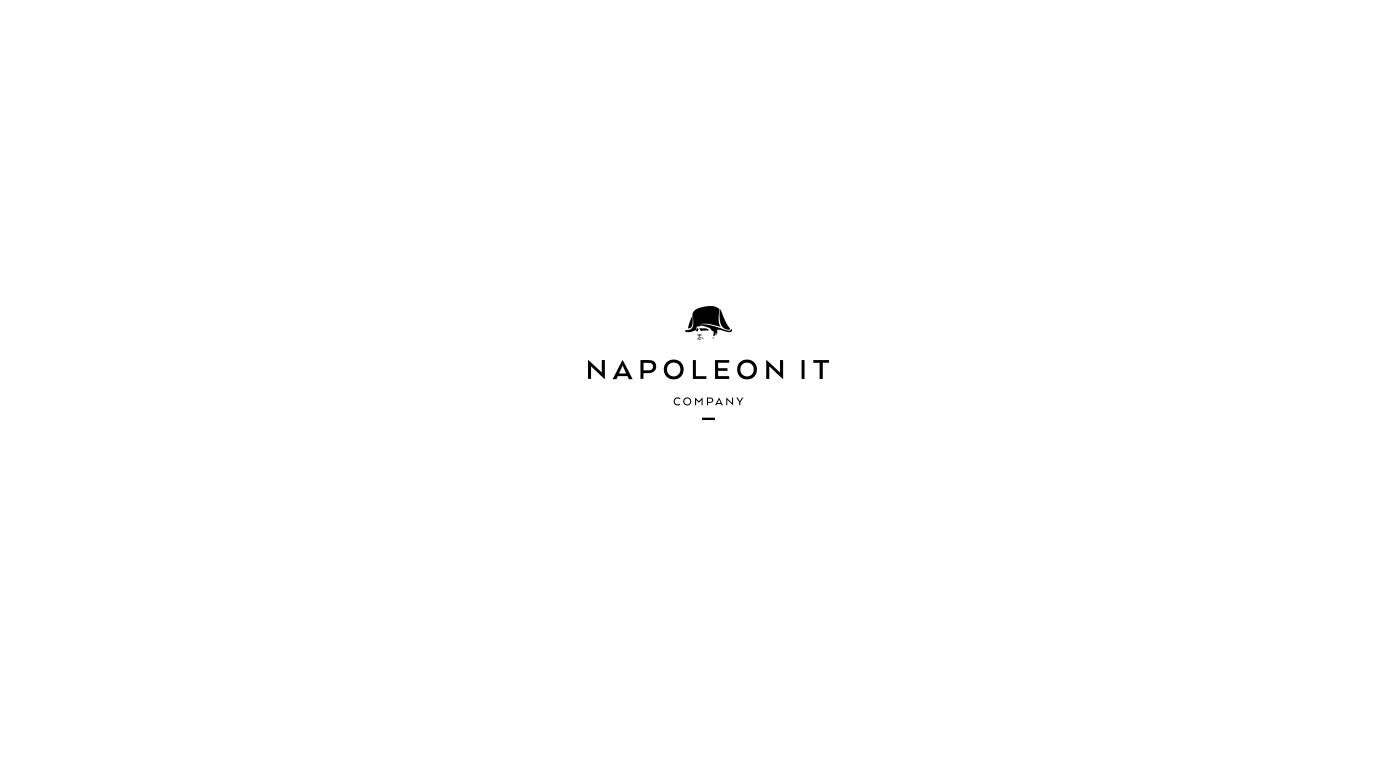 IT logo Logotype identity napoleon Web Interior