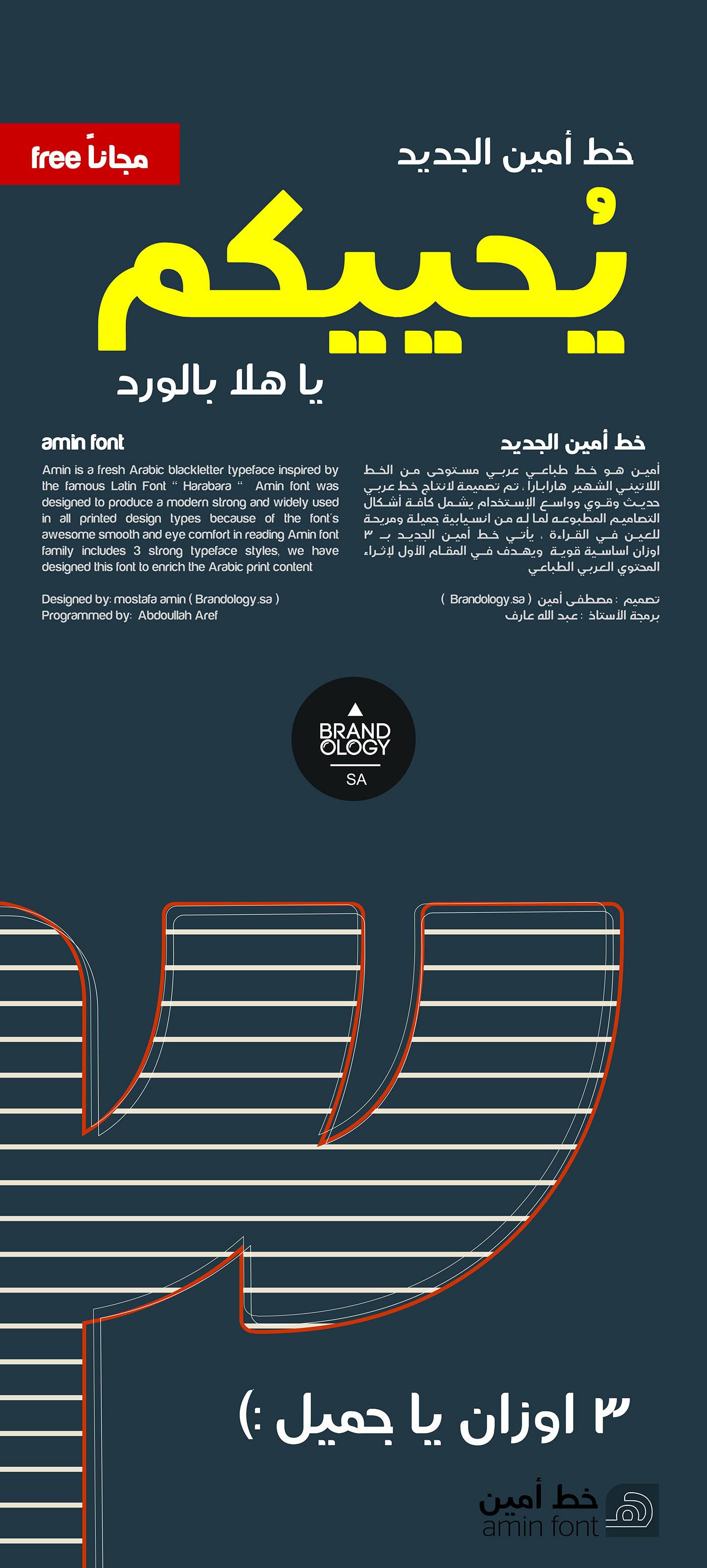 Amin Font Download