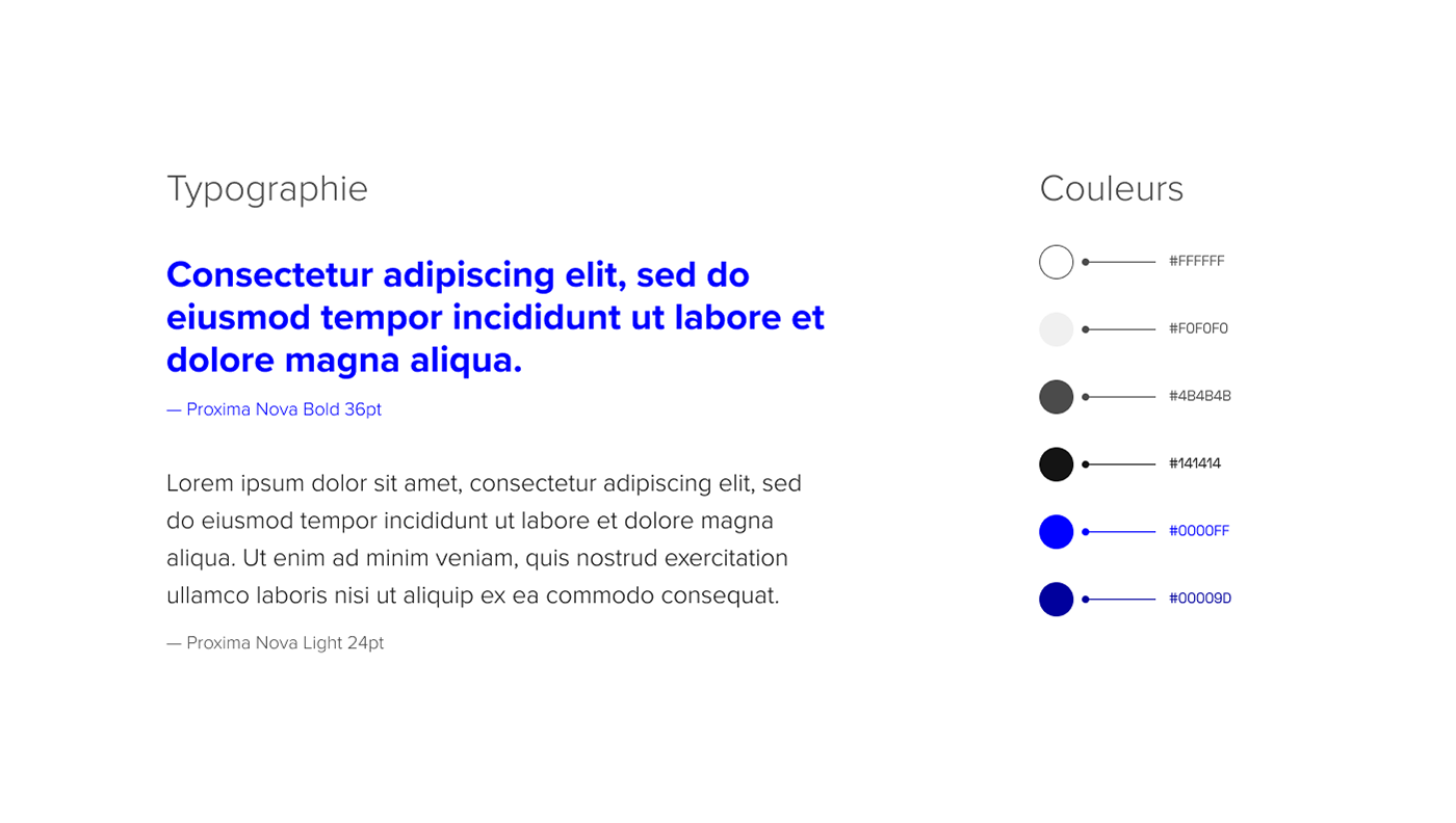 Guidelines — Typograpy + colors