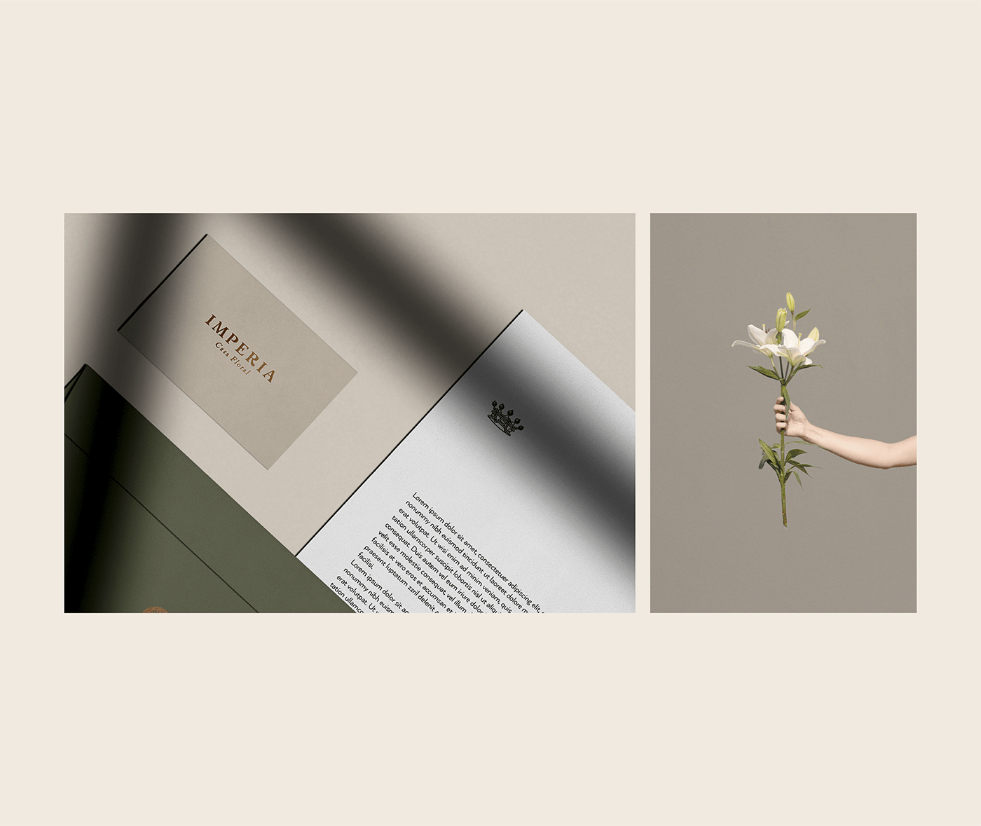 flower flowershop mexico ILLUSTRATION  branding  Packaging Stationery female woman Nature
