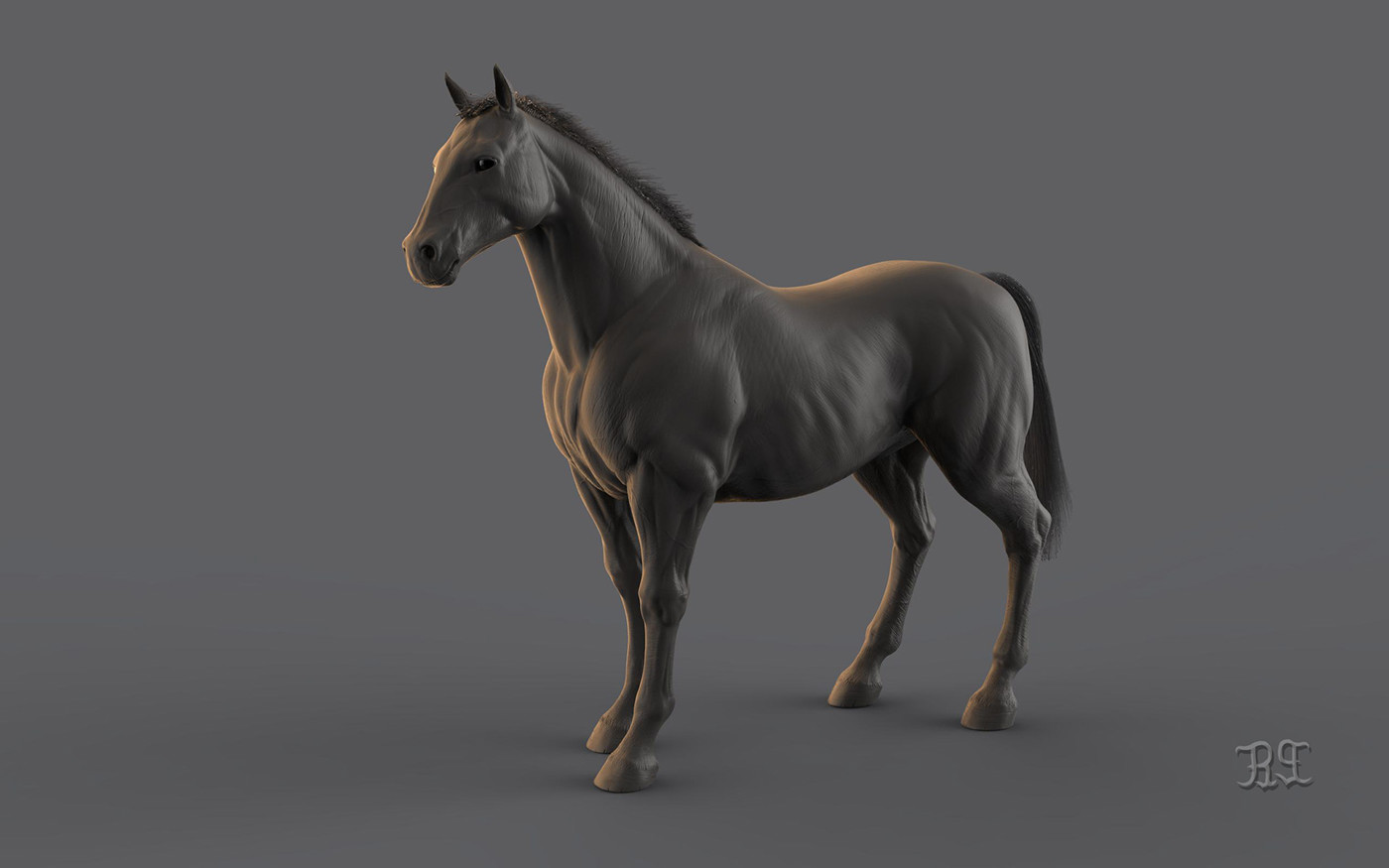 3D Horse anatomy Study in ZBRUSH on Behance