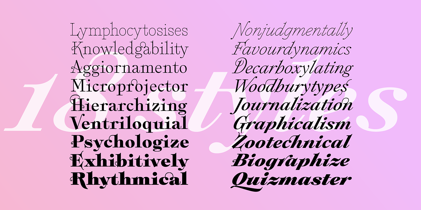 branding ,contemporary,editorial,Fashion ,font,modern,sudtipos,typography