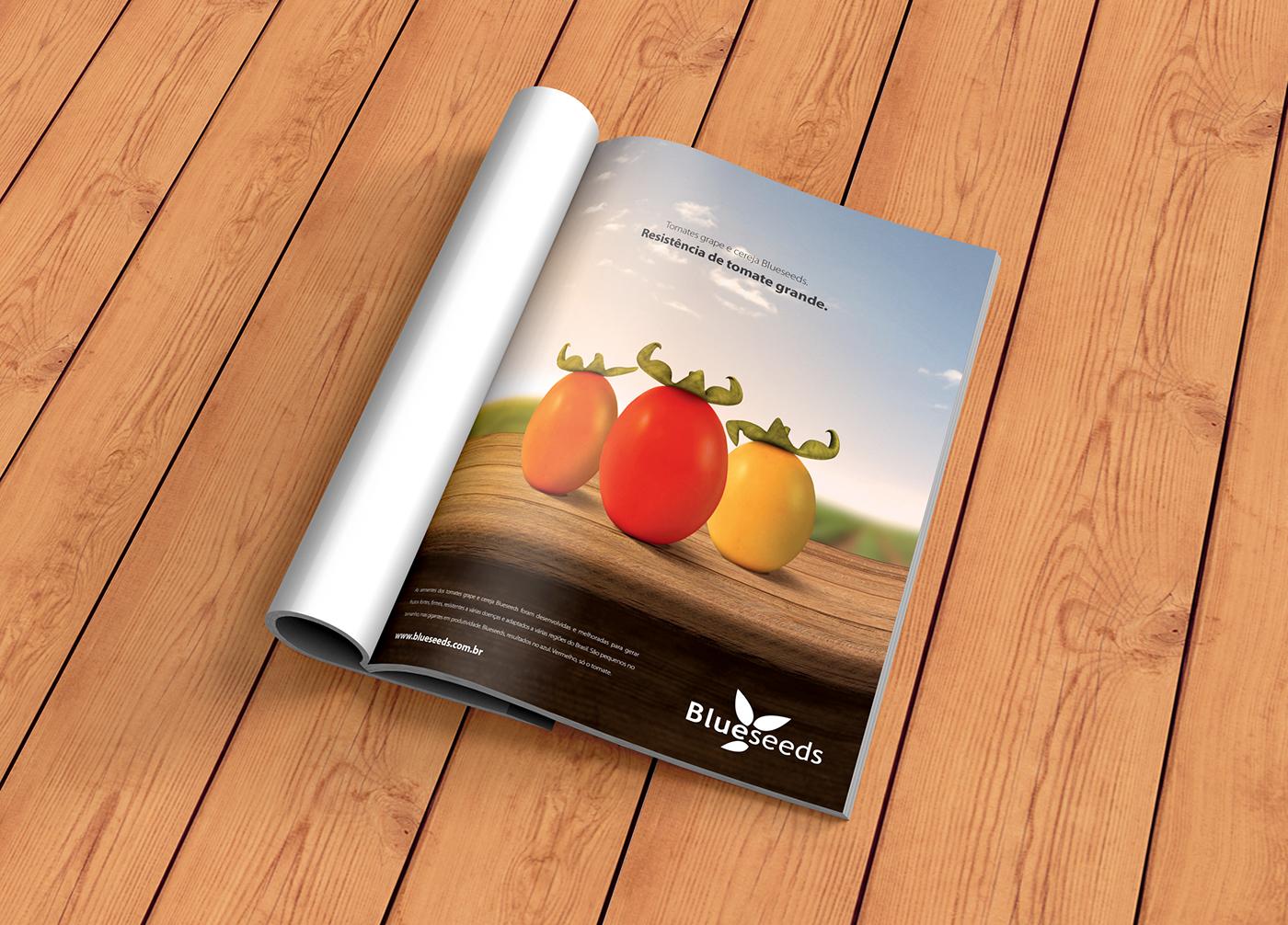 Tomato strong tomate grande FORTE Agribusiness Agro Agronegócio ad anúncio