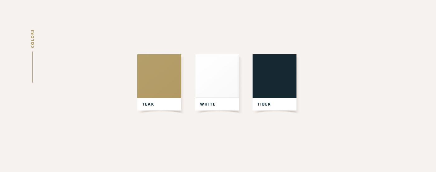 high school identity design - colors