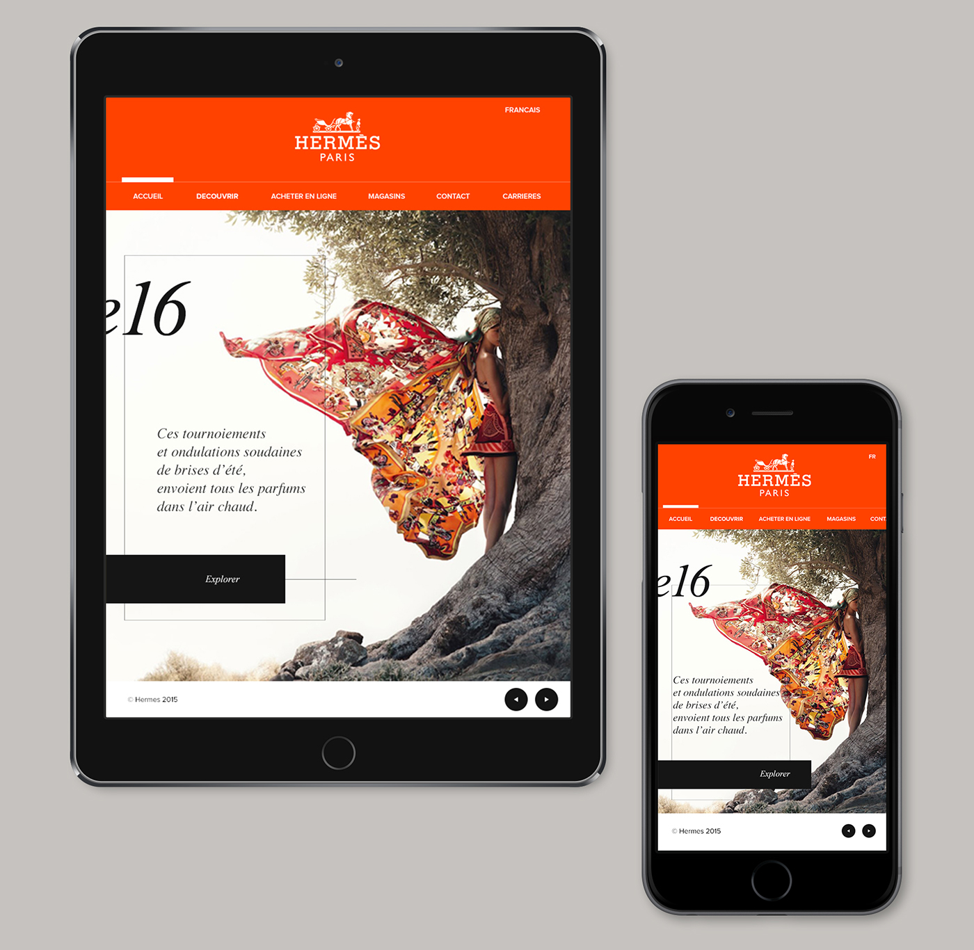 Web design luxury minimal flat Mode