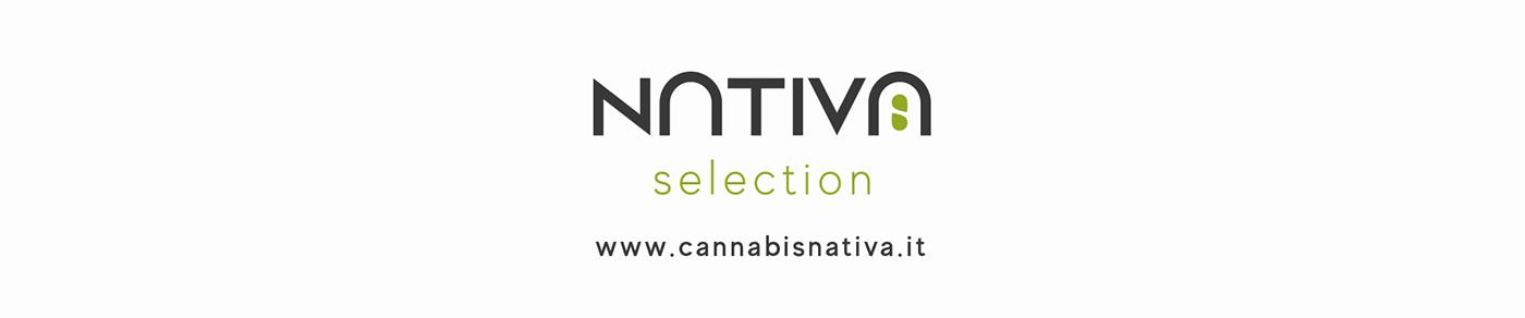 animation  cannabis Fruit ILLUSTRATION  marijuana motion motion graphic vegetable weed