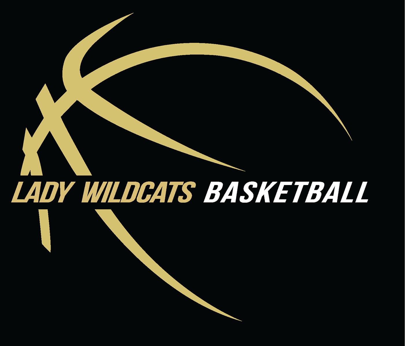 豐富的25款籃球logo欣賞