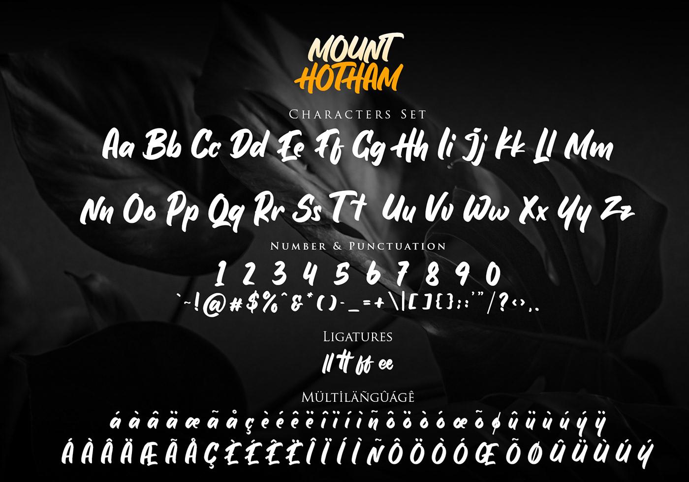 Шрифт – Hotham