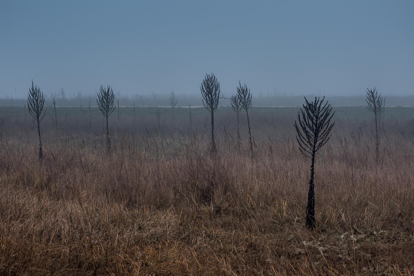 Landscape Minimalism Photography  simplicity art minimal Moody Nature moodboard