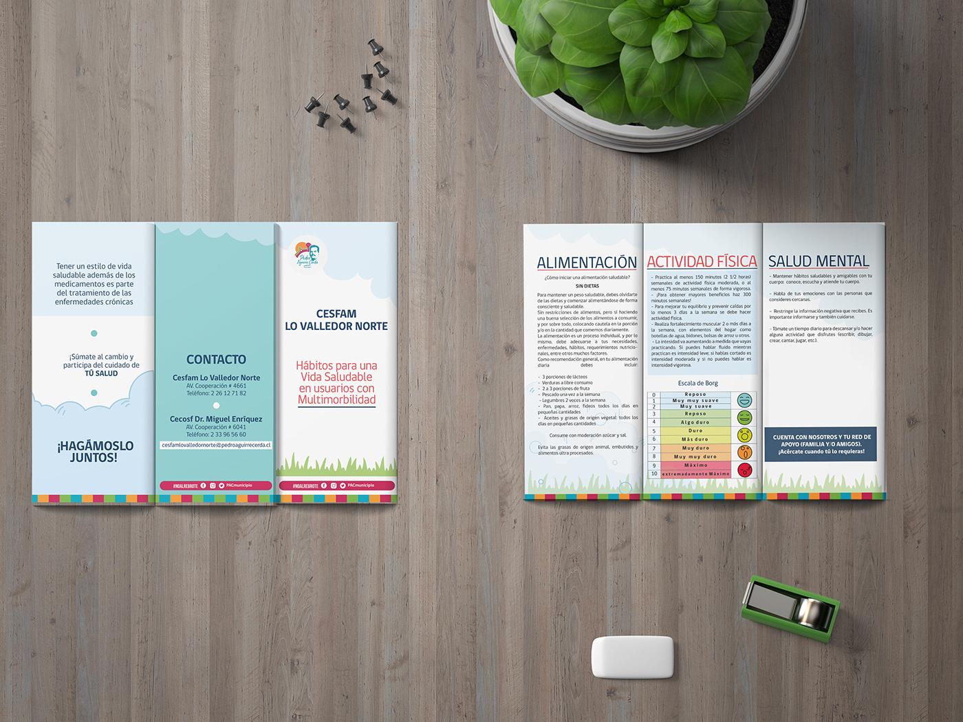Adulto Mayor diseño Diseño editorial diseño gráfico multimorbilidad municipalidad salud