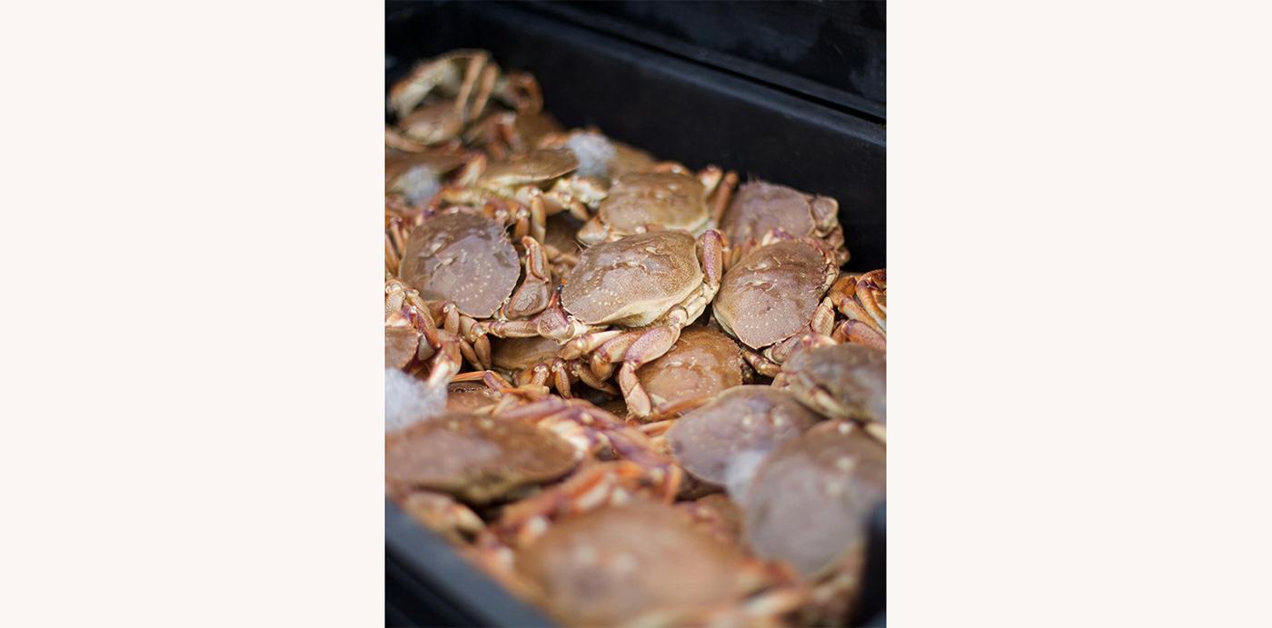 restaurant seafood fish lobster Quebec Food  local