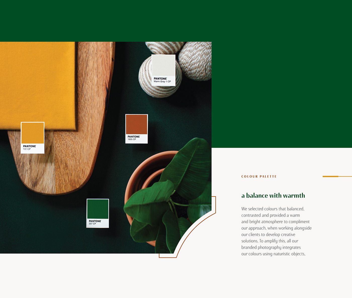 The complete Foster Creative colour palette displayed using natural objects.