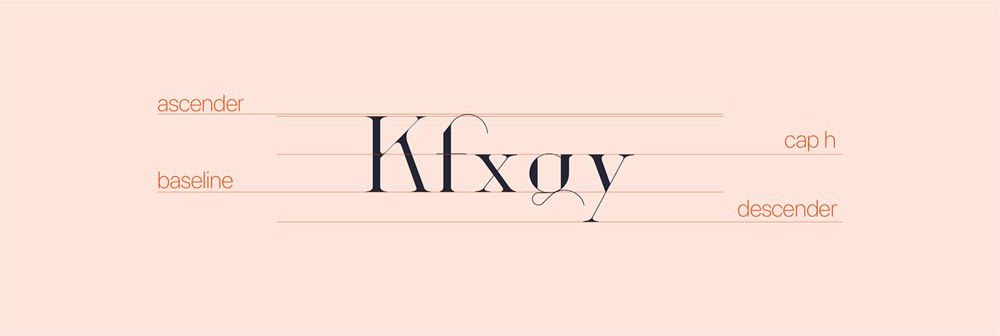 font Typeface fonts fontype type