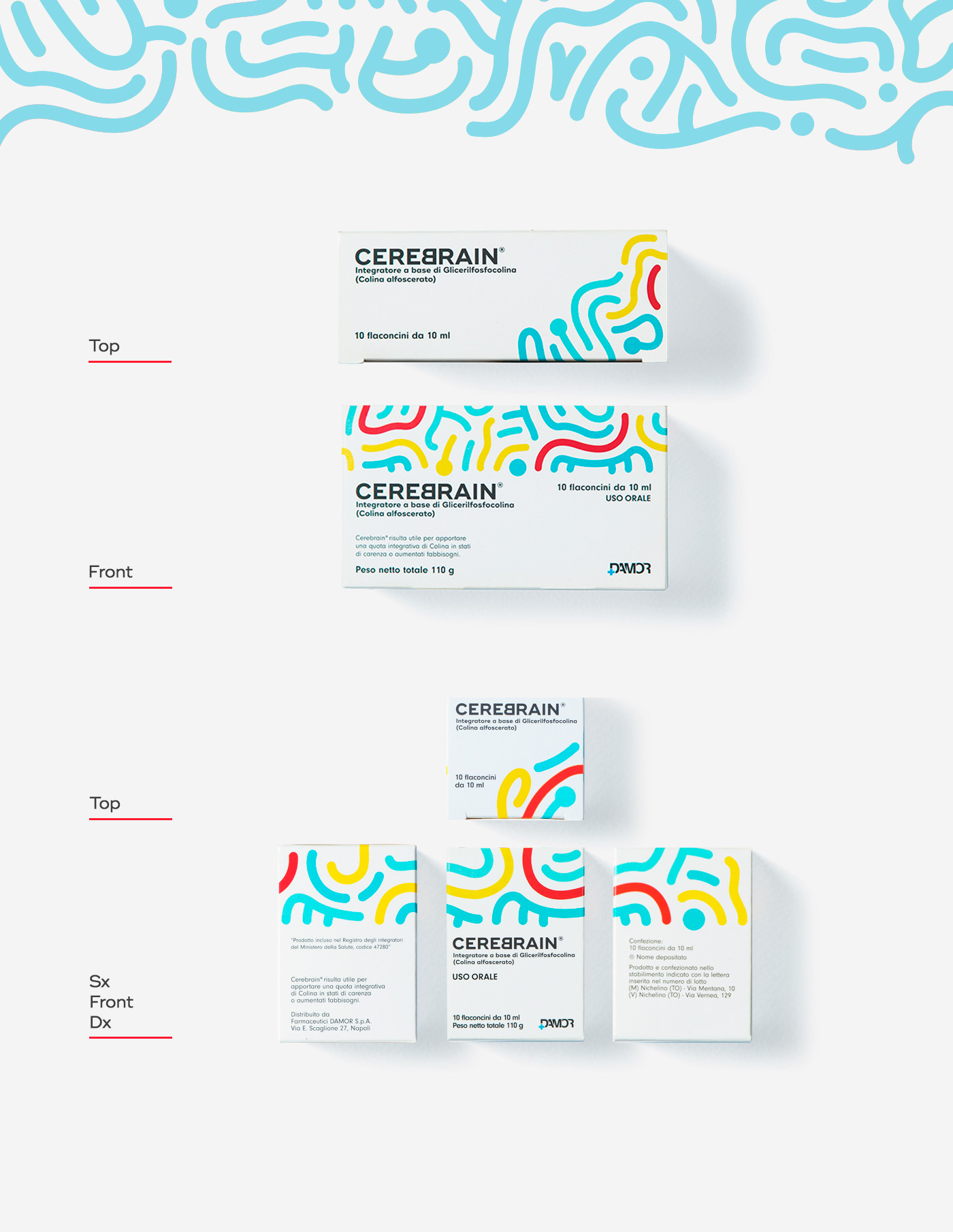 type pattern Packaging graphic design  box brain typography   color branding  art direction