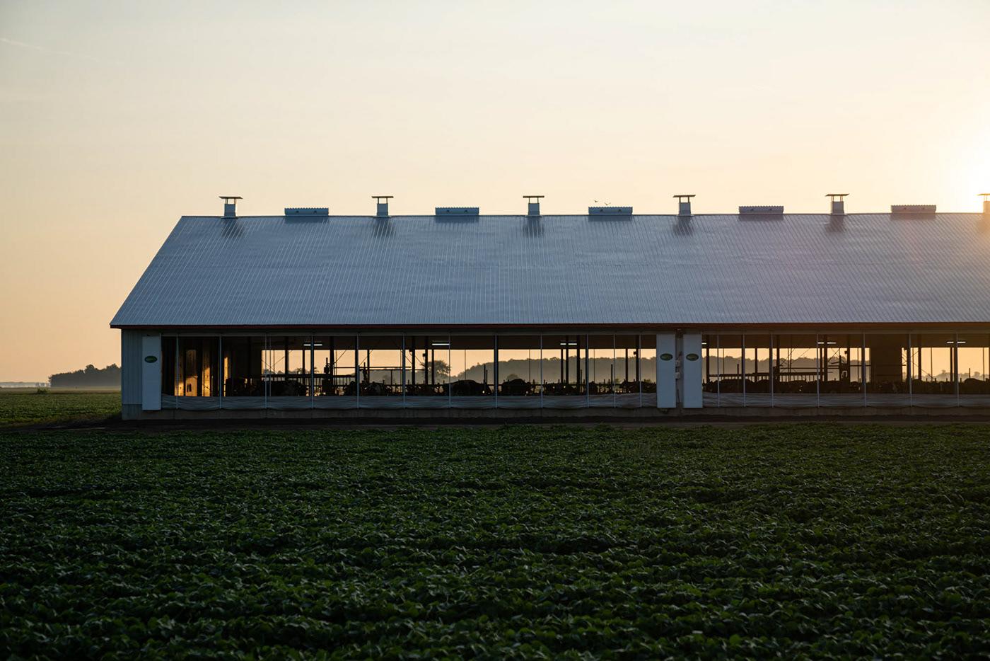 Sollio agriculture K72 Coop Quebec colorful farming farm ferme Canada