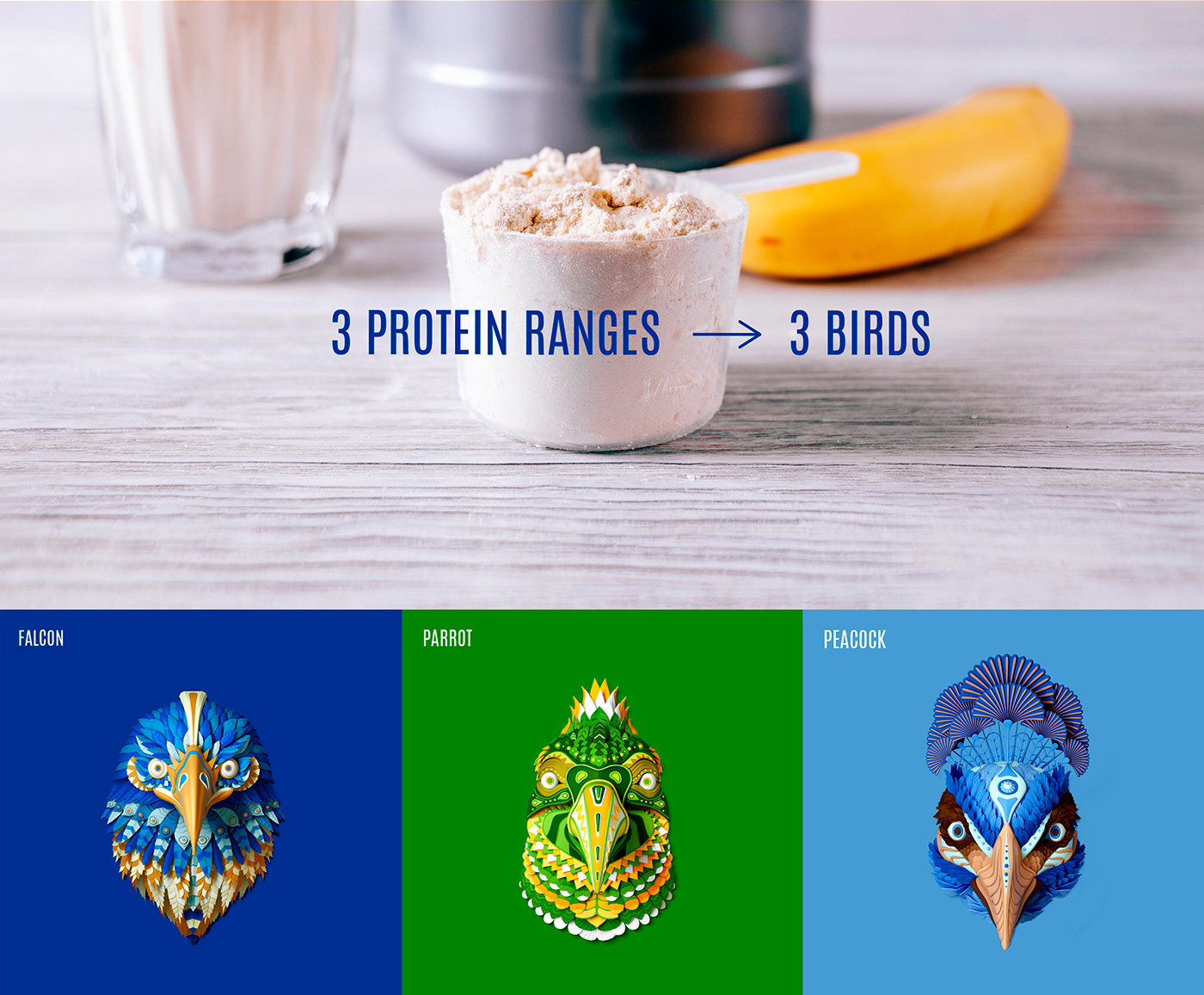 protein bird healthy fitness mexico natural vegetal