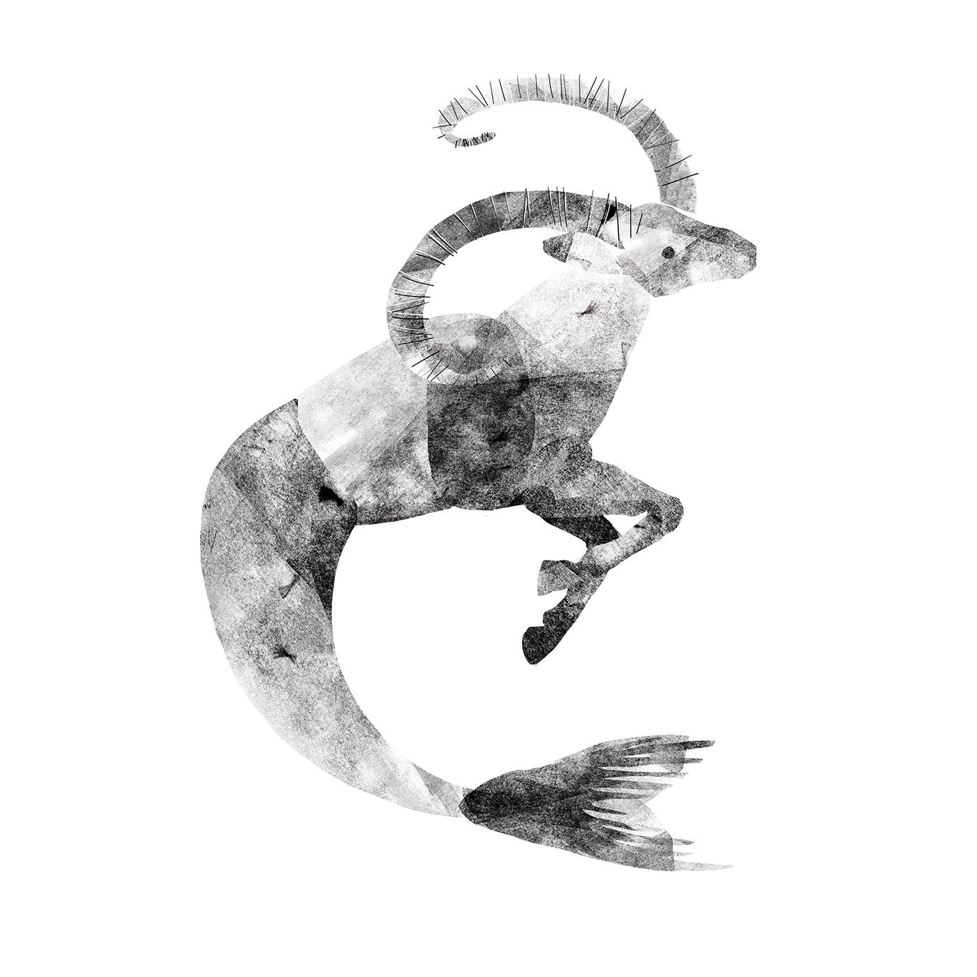 zodiac sign texture collage design Horoscope inspiration journal oroscopo stars