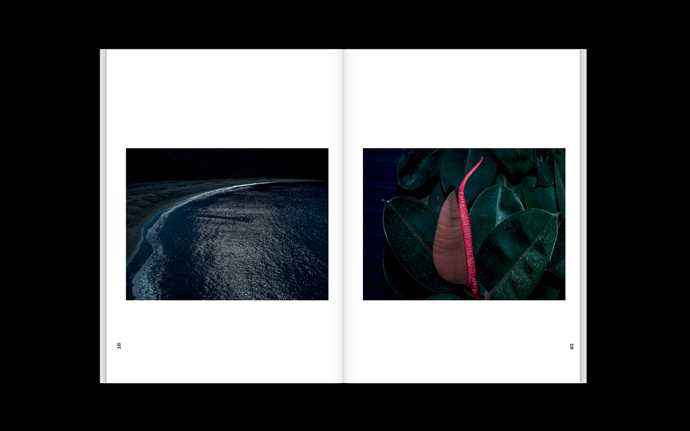 editorial,Greece,book,TINOS,cartes,postales,fetanis,typography  ,Photography