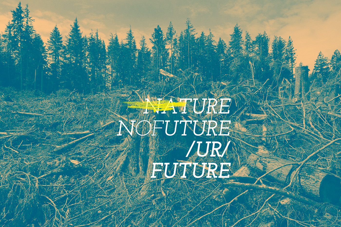 Nature plants strong colors forest Deforestation destruction Tress green think Love earth