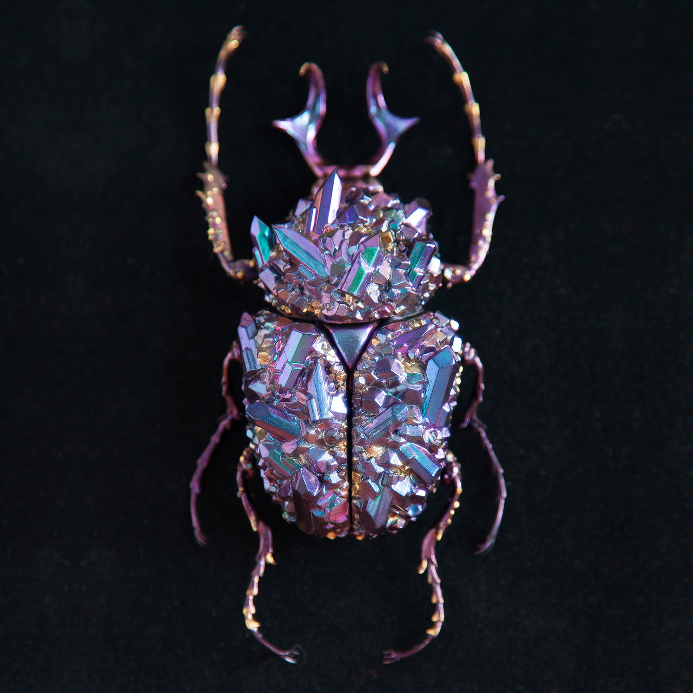The Mineral insect