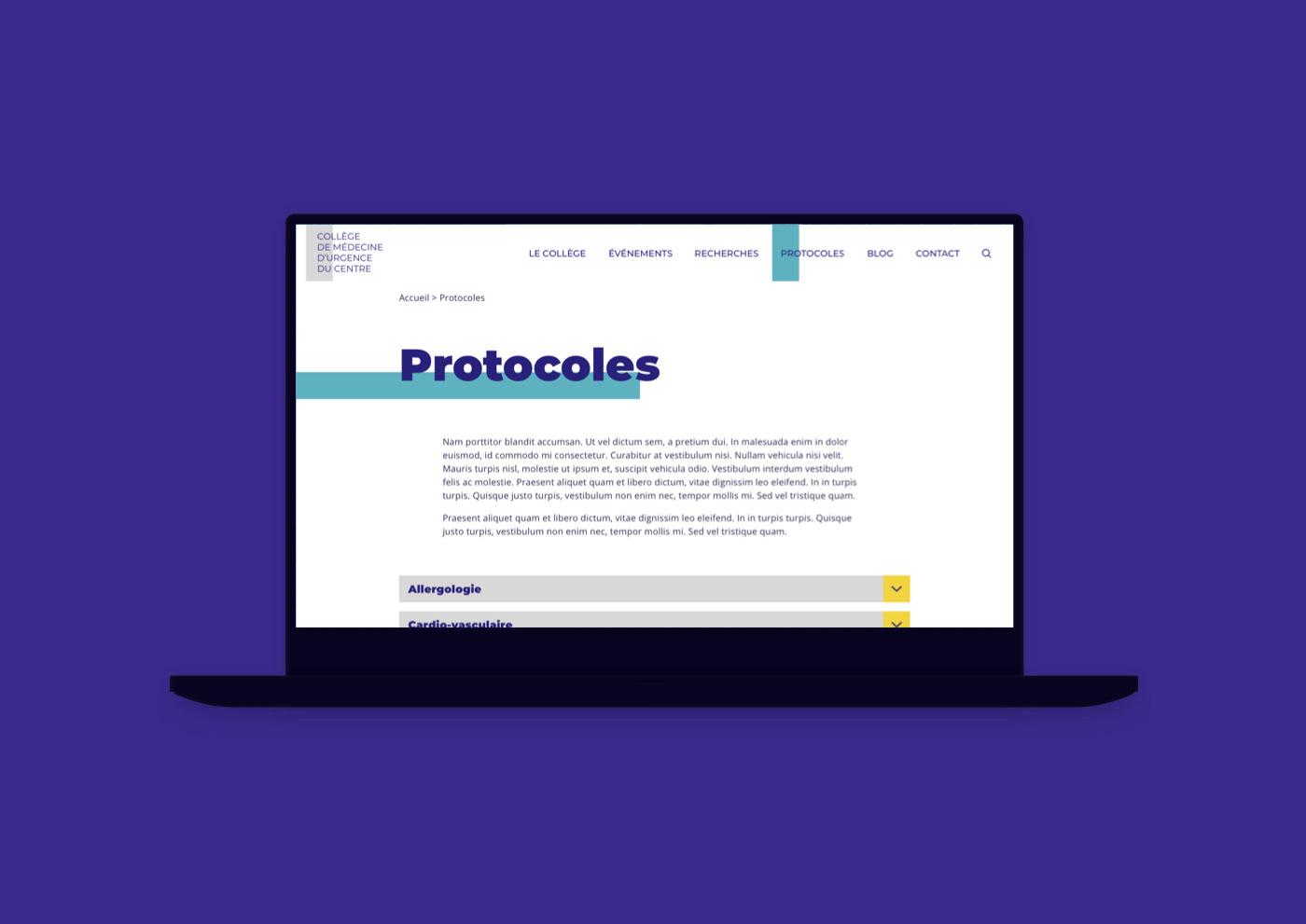 Web Design  UI wordpress Medecine Website Val de Loire sketch Freelance design system Atomic Design