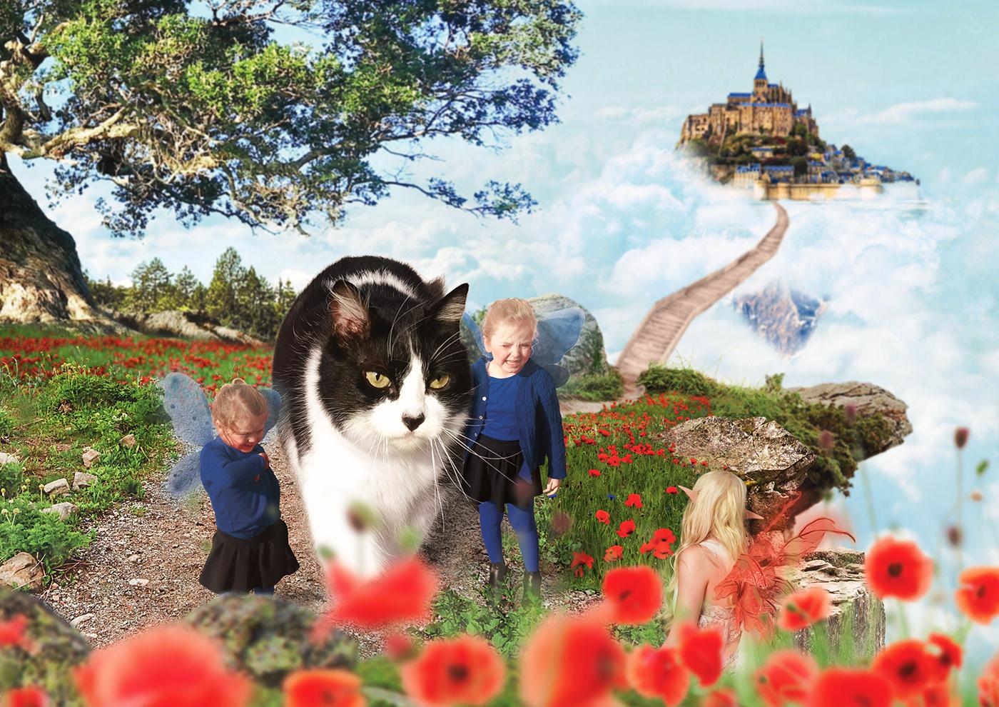 photoshop Photo Manipulation  retouching  Digital Art  fantasy faeries Cat floating islands concept art
