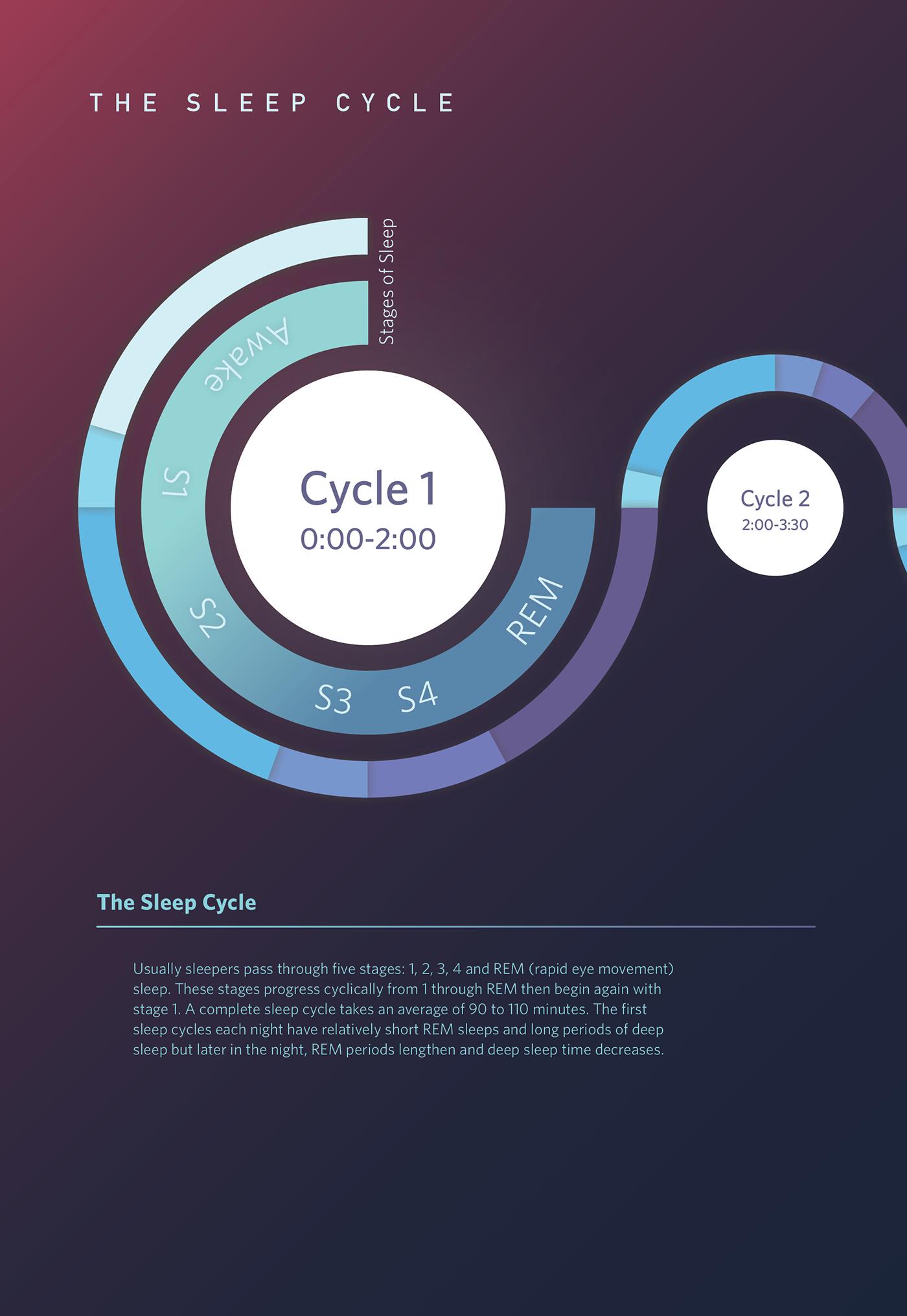 the sleep cycle infographic on behance