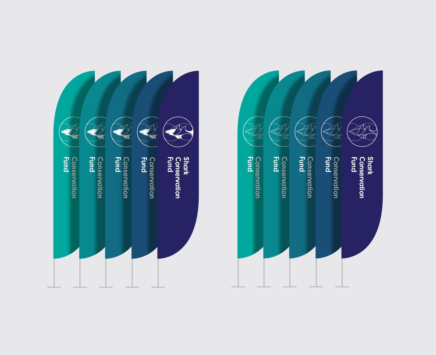 superfried leonardo dicaprio foundation logo brand identity sharks rays ILLUSTRATION  graphic design  shark conservation fund charity