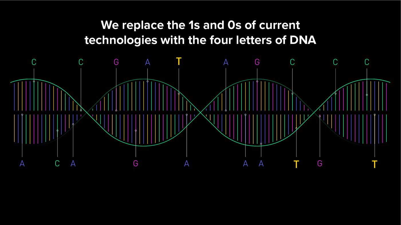 DNA Twist animation  strands particles Data Viz explainer motion Storyboards information design