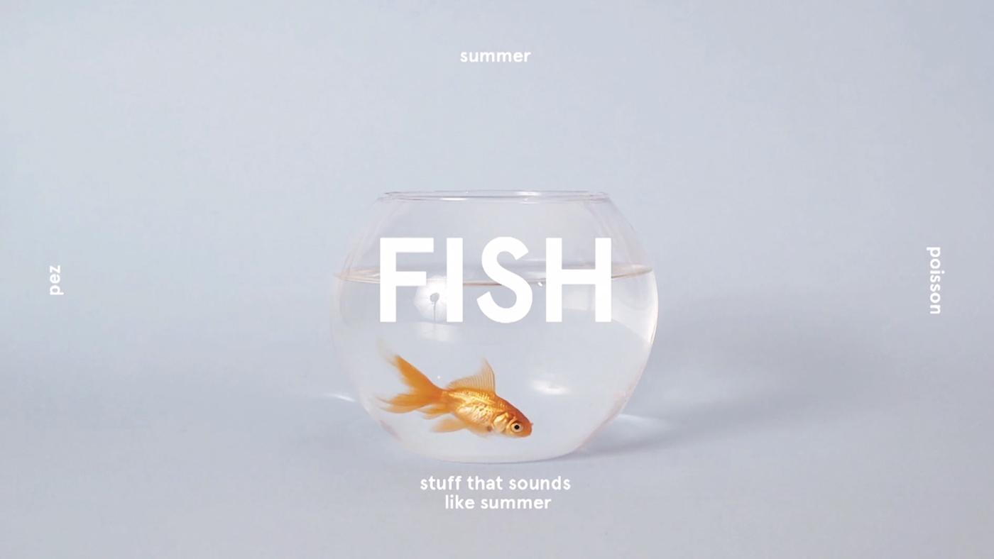 summer sound shooting studio colors simple minimal Fun holidays