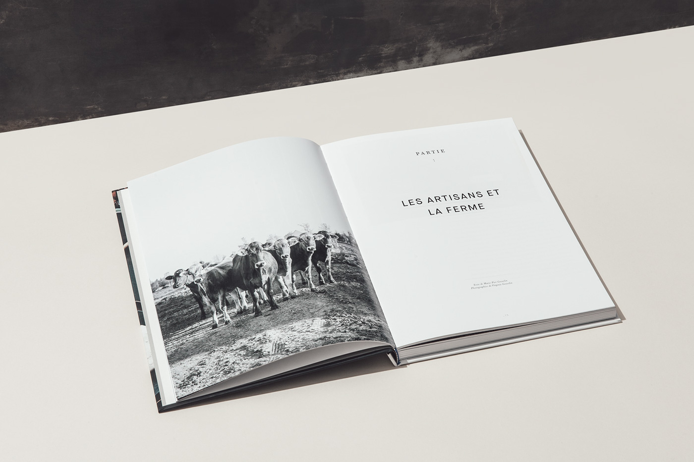 cookbook,Cheese,cow,culinaire,livre,chef,Food ,styling ,Culinary,book,agriculture,restaurant,portrait