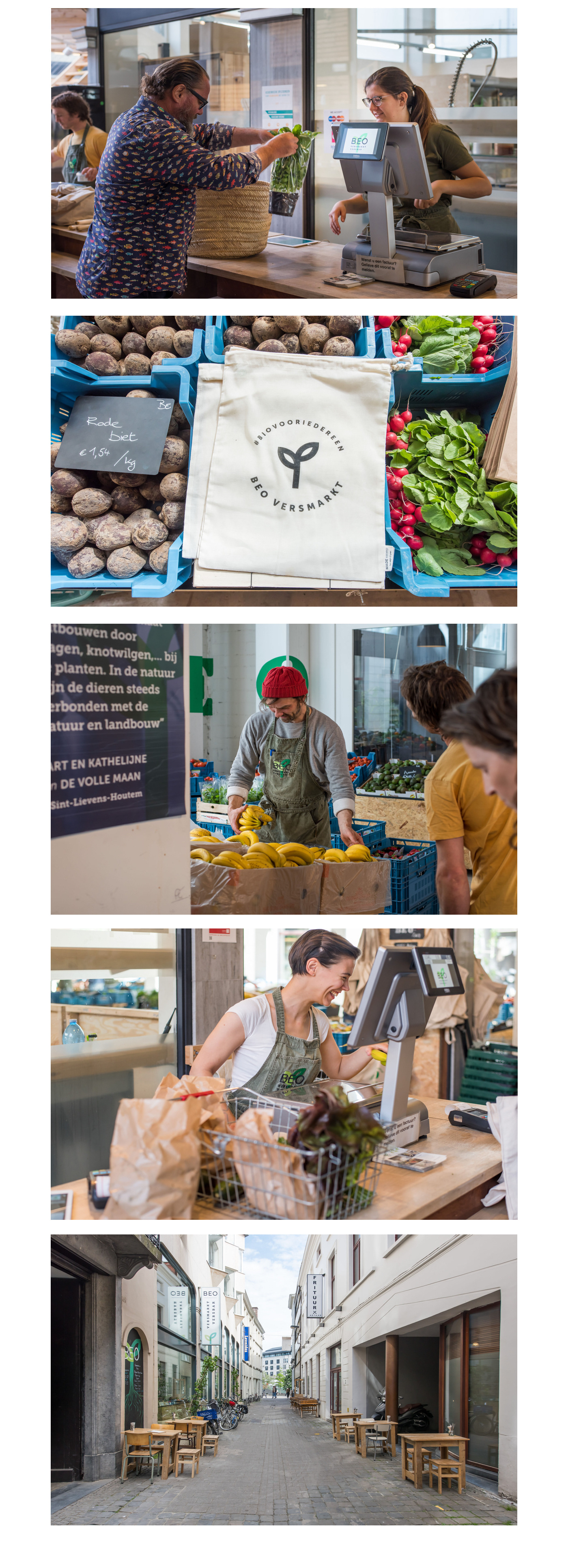 branding  organic healthy fresh vegetables green logo identity