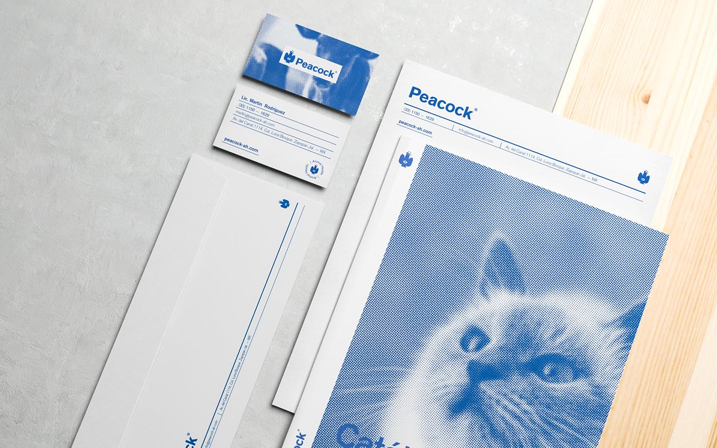 #brand indentity peacock medical vet Packaging logo blue branding  menta picante
