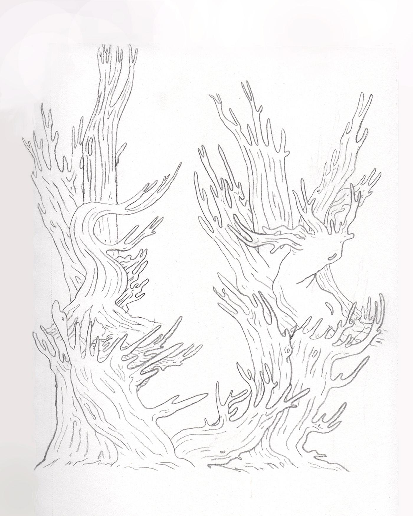 Drawing  ILLUSTRATION  Nature trees